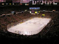 Joe Louis Arena title